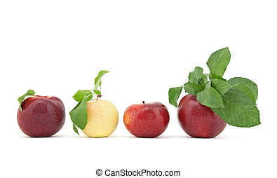 Row of apples with leaves on white background