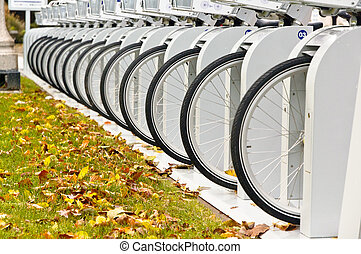 Row of Bicycle Wheels