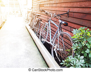 bicycles parking at vintage wooden wall