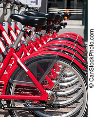 Row of bikes - Rows of red bikes that are used for rentals...