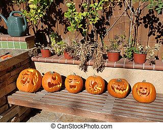 Row of Carved Halloween Pumpkins