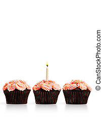 Row of cupcakes with a single lit candle isolated on white