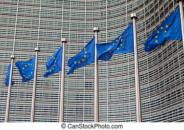 Row of EU European Union flags flying in front of...