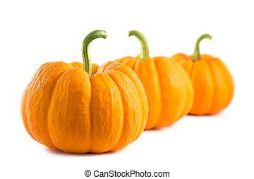 Row of fresh orange pumpkins