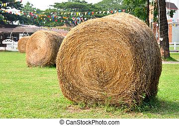 Row of haystack in garden.