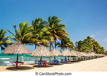 Row of palm trees and tables to relax at on the Caribbean coast in Covenas, Colombia