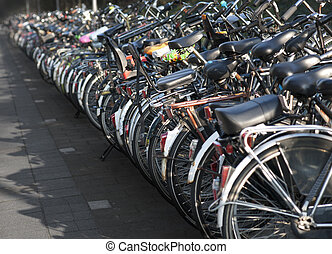 Row of parked bicycles