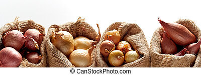 Row of sacks with different kinds of onion