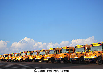 Row of School Buses - Row of school buses on sunny day with...