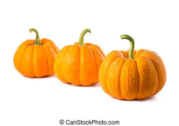 Row of three small pumpkins