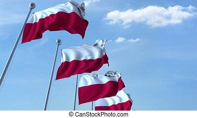 Row of waving flags of Poland agaist blue sky, seamless loop