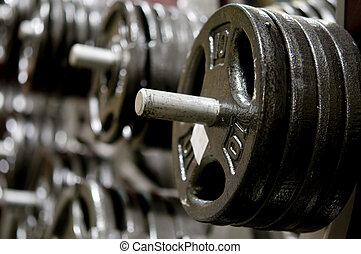 Row of weights in gym