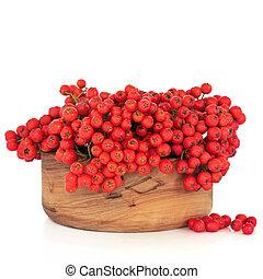 Rowan Berries - Rowan berry fruit in an olive wood bowl, ...