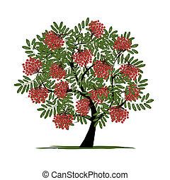 rowan, disegno, bacche, albero, tuo