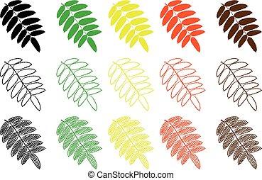 Rowan leaf - color set