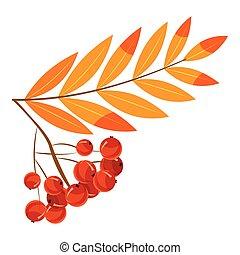 Rowanberry branch icon, cartoon style - Rowanberry branch...
