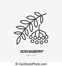 Rowanberry flat line icon, rowan sign, healthy food logo....