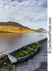rowboat, überwachsen, kylemore, lough, ufer