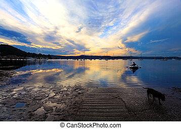 rowboat, spät, ufer, sonnenuntergang, nachmittag, kommen