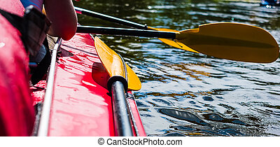 rowers, 통하고 있는, 카누, 부동적인, 에, 해안