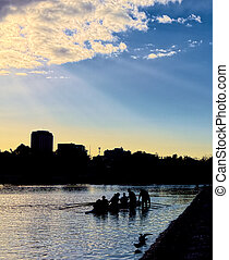 Rowers on the Yarra in Melbourne