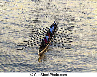 rowers training on the river