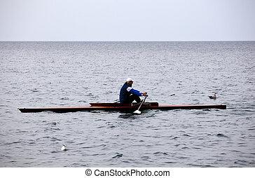 Rowing team on the Trieste sea