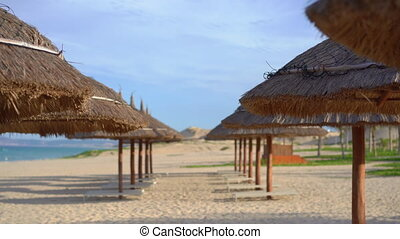 Rows of beach umbrellas made of natural materials.