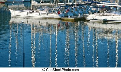 Rows of boats in marina in adriatic sea bay harbor in Pula,...