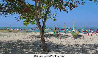 Rows of Colorful Outrigger Tour Boats on the Sand - Many...