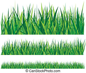 rows of grass