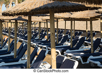 Rows of loungers or beds on beach