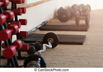 Rows of red metal dumbbells on rack in the gym