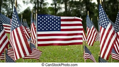 Rows of slow waving American flags, and one single USA flag blowing in the wind. Patriotic concept for US holidays, 4th of July, Memorial day, or Veteran's day.