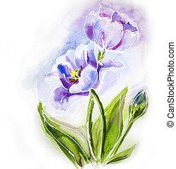 roxo, aquarela, painting., tulips