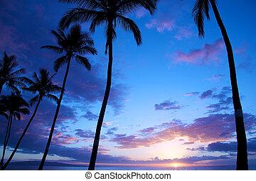 roxo, azul, pôr do sol