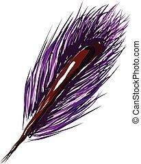 roxo, cor, vetorial, illustration., pena