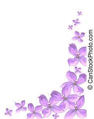 roxo, floral, cópia, borda, espaço
