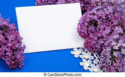 roxo, lilás, ligado, um, fundo, de, azul, papel