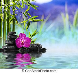 roxo, orquídea, bambu, pedras