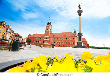 Royal castle and Zamkowy square, monument column and flowers...