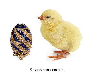 Royal chick
