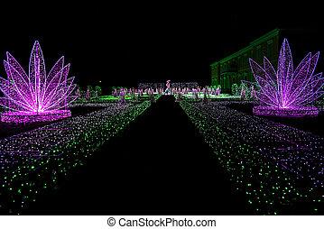 Royal Garden of Lights