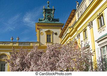 Royal Wilanow Palace in Warsaw, Poland. Magnolia tree. - ...