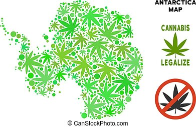 Royalty Free Cannabis Leaves Collage Antarctica Map -...