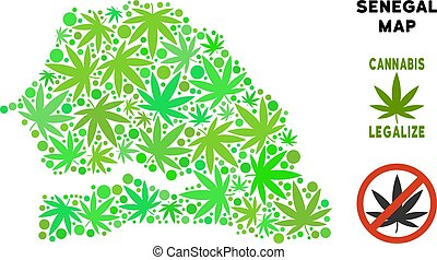 Royalty Free Cannabis Leaves Collage Senegal Map - Royalty...