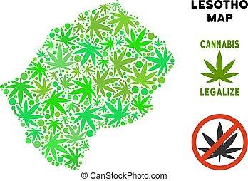 royalty livre, cannabis, folhas, mosaico, lesotho, mapa