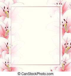 roze bloem, grens, vrijstaand, spandoek, achtergrond, witte lelie, kaart