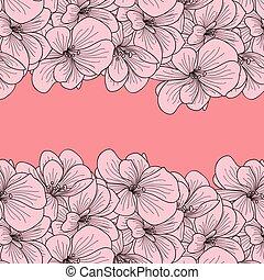roze bloem, twee, geranium, achtergrond, randjes