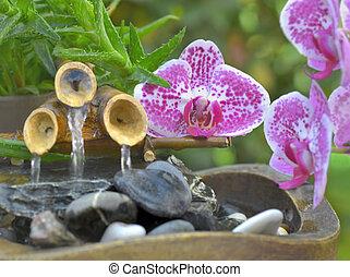 roze, decoratief, weinig; niet zo(veel), fontijn, zetten, bamboe, bloemen, orchidee